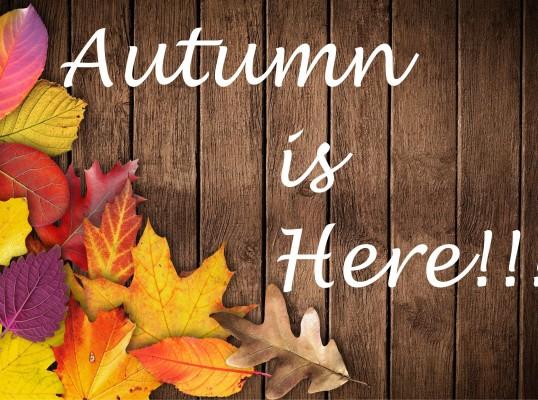 Εκδρομές Φθινόπωρο - 28η Οκτωβρίου